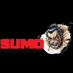 Sumo Boards – casestudy